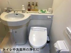 画像4: ホワイトセージ浄化ミスト ヒマラヤ水晶入り K0529 (4)